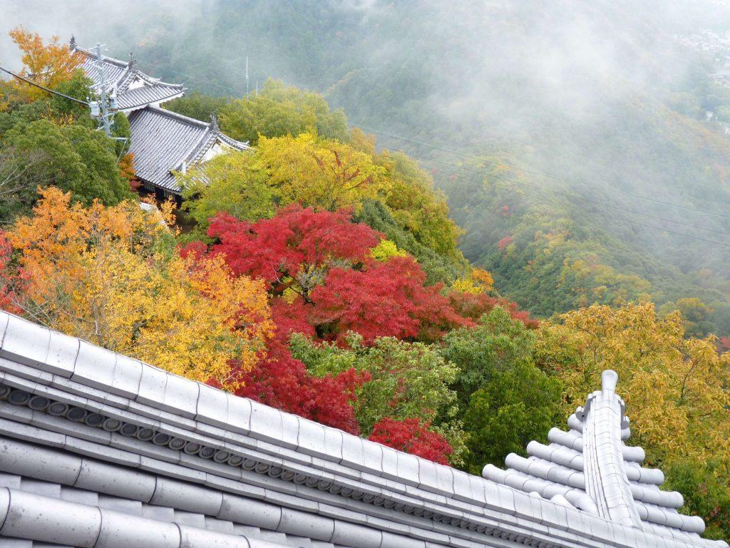 Castelo de Gifu vista traseiras Japão Mundo Indefinido