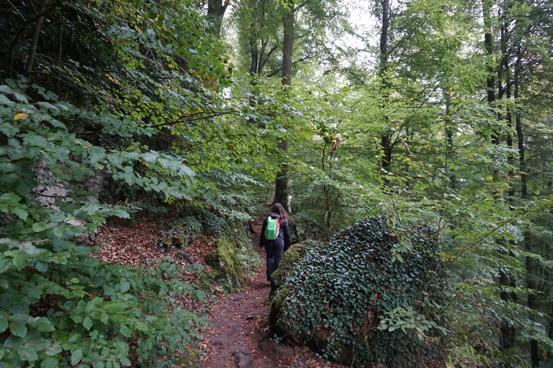 Catarina no Trilho de Mullerthal, no Luxemburgo