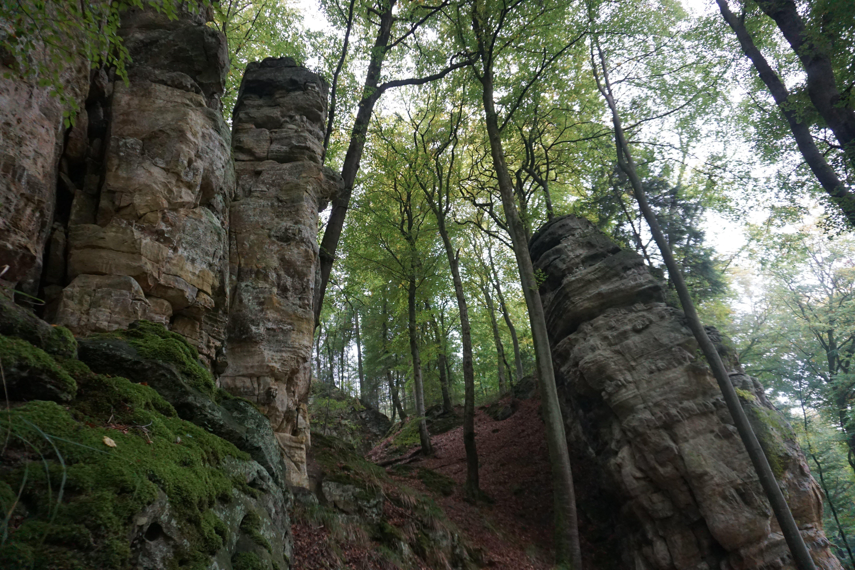 Formação rochosas do Trilho do Mullerthal, no Luxemburgo