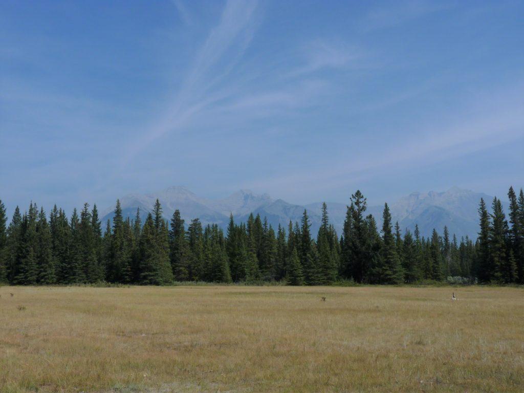 Hoodoos Trail 03 Banff Canadá