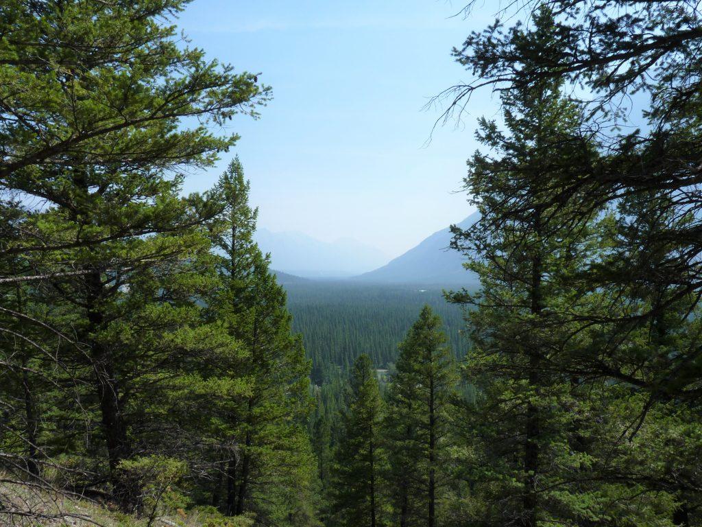 Hoodoos Trail 09 Banff Canadá