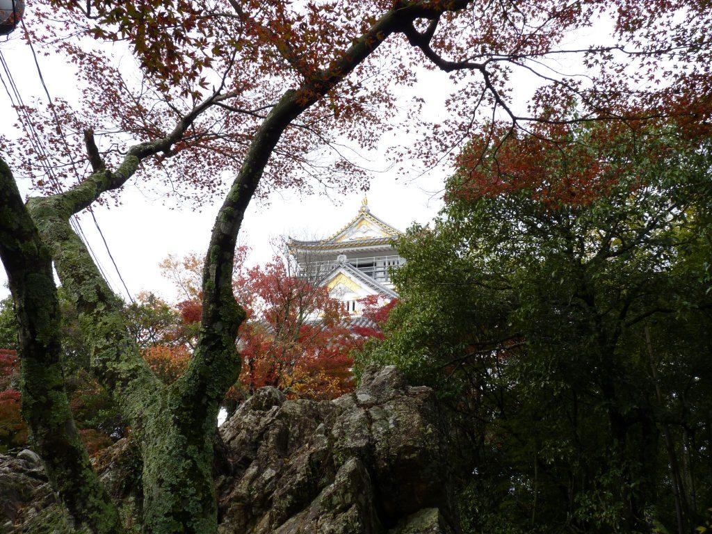 Castelo de Gifu nas árvores Japão Mundo Indefinido